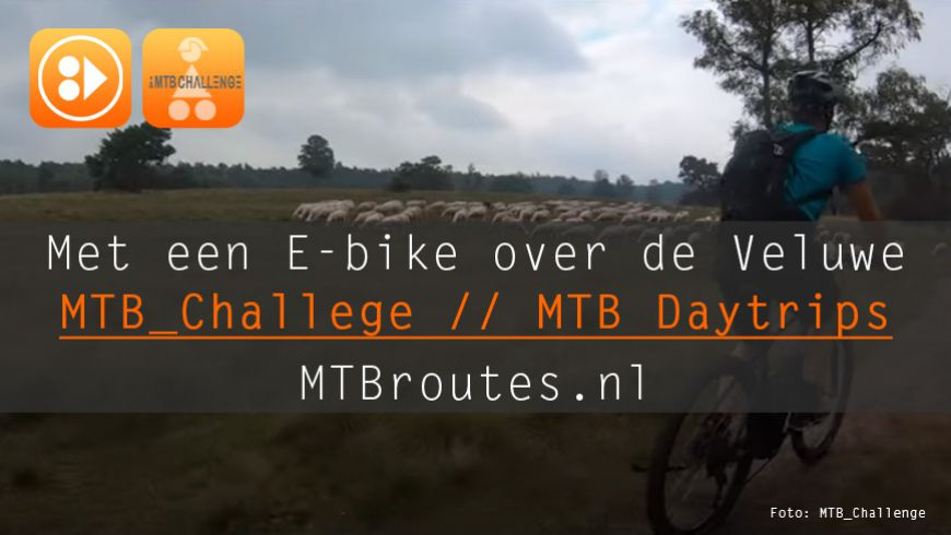 Video: Met een E-bike over de Veluwe