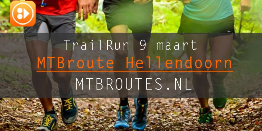 Trailrun op Hellendoornseberg